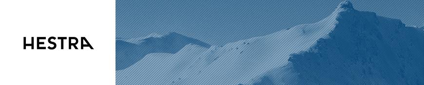 Hestra Ski Gloves | Ski Gloves | Ski Mittens - Snowtrax