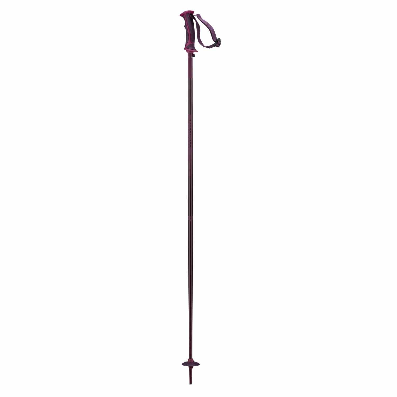 Salomon Arctic Lady Ski Pole Fig 2020