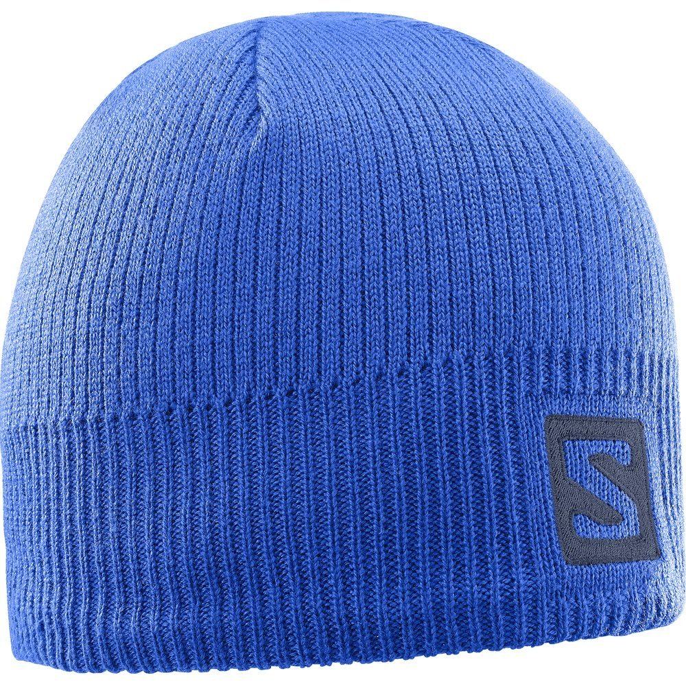 Salomon Logo Beanie Surf the Web 2018